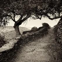 Kykladen, Griechenland – Wandern auf Amorgos