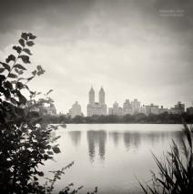 Analog Photography: New York City – Central Park
