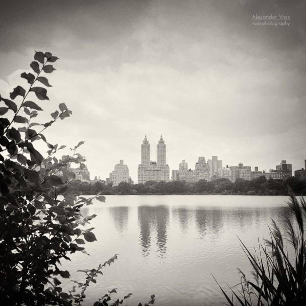 Analog Photography: New York City - Central Park
