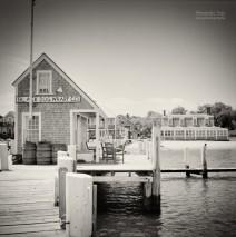 Analog Photography: Martha's Vineyard – Black Dog Wharf
