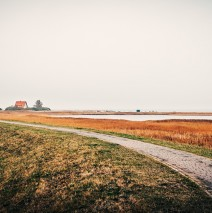 Hiddensee Island – Autumn Landscape