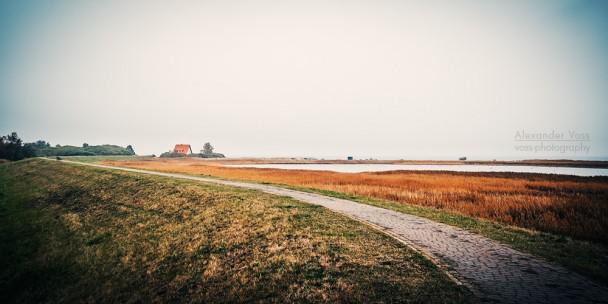 Hiddensee - Landschaft im Herbst