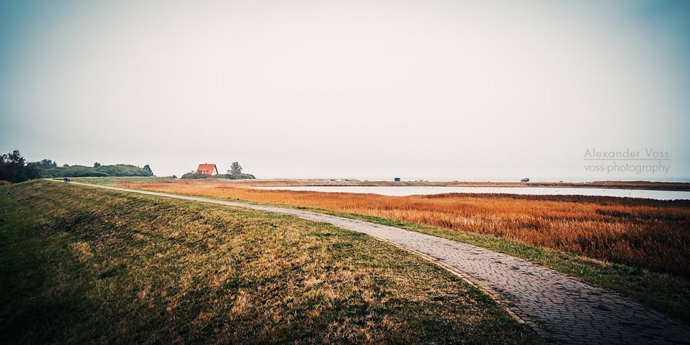 Hiddensee Island Autumn Landscape Alexander Voss Fine Art