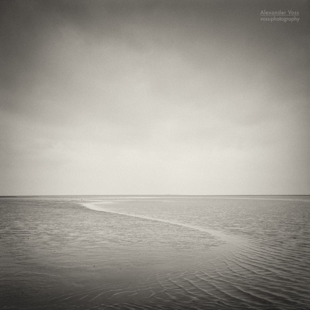Analog Black and White Photography: Wadden Sea