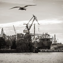 Black and White Photography: Hamburg Harbour