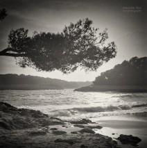 Analog Black and White Photography: Majorca – Cala Mondrago