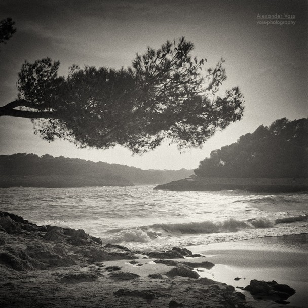 Analog Black and White Photography: Majorca - Cala Mondrago