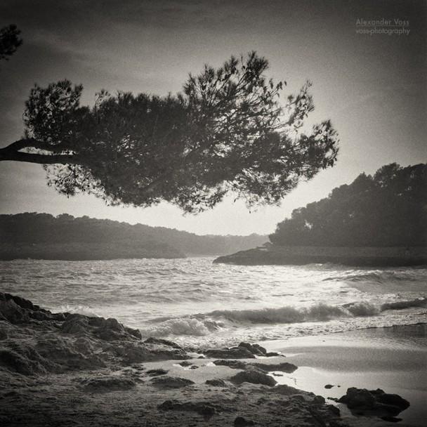 Analog Black and White Photography: Majorca - Cala Mondrago