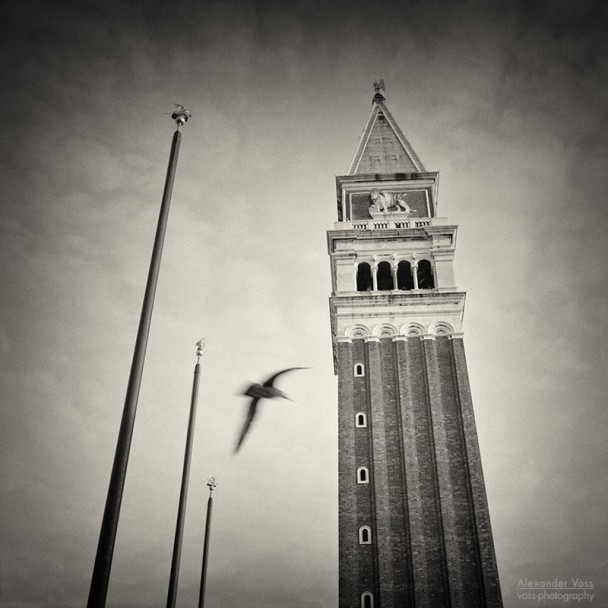 Analog Black and White Photography: Venice - Campanile