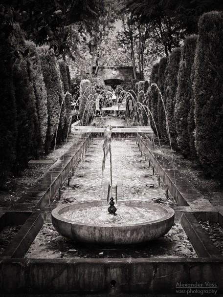 Black and White Photography: Palma de Mallorca - S'Hort del Rei