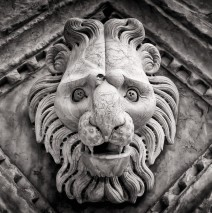 Black and White Photography: Siena Cathedral (Detail)