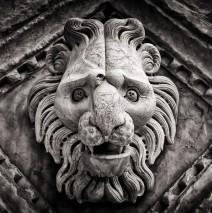 Schwarzweiss-Fotografie: Dom von Siena (Detail)
