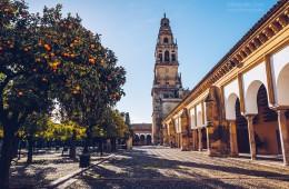 Córdoba – Mezquita / Patio de los Naranjos