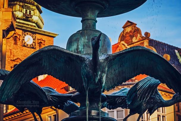 Copenhagen - Stork Fountain / Amagertorv