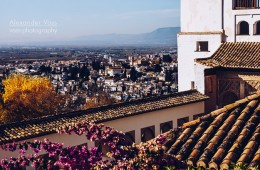 Granada – Generalife