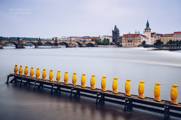 Prague - Yellow Penguins / Museum Kampa