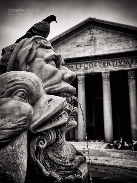 Black and White Photography: Rome - Fontana del Pantheon