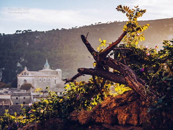 Valldemossa (Majorca)