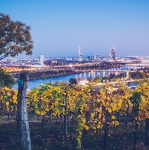 Vienna – Nussberg Hill