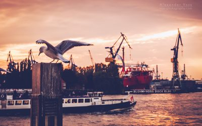 Hamburg Harbour