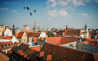 Bratislava – Old Town Roofscape
