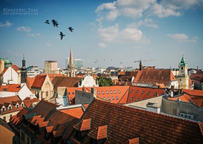 Bratislava - Altstadt / Dachlandschaft