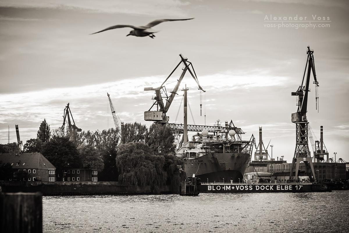 Hamburg Harbour in black and white
